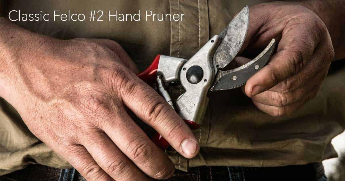 the classic Felco 2 pruner held if the hands of an old gardener