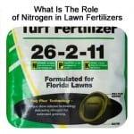 What Is The Role of Nitrogen in Lawn Fertilizers