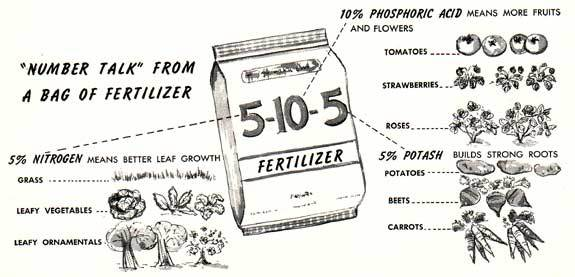 Fertilizer Numbers Learn To Read The Numbers On Fertilizer Bags