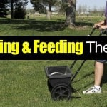 Lawn Fertilization: How To Feed And Fertilize Like A Lawn Care Ninja