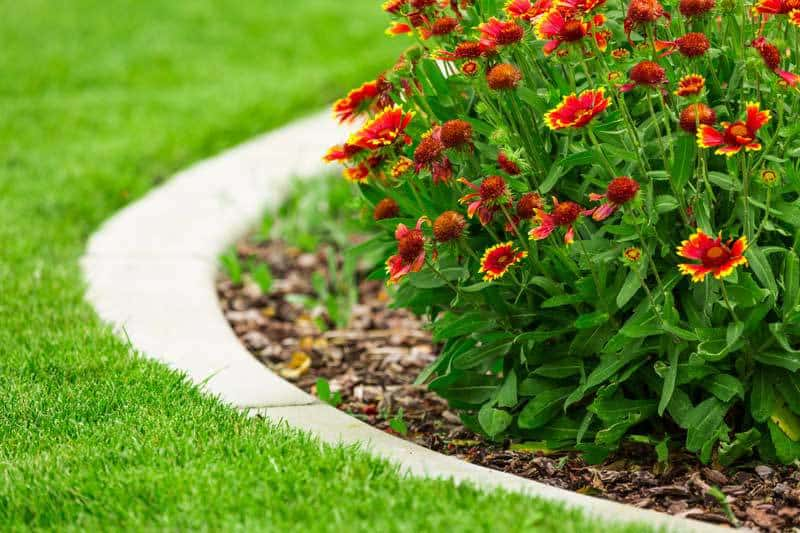 garden beds low maintenance