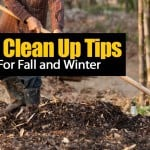 Garden Clean Up Tips For Fall and Winter