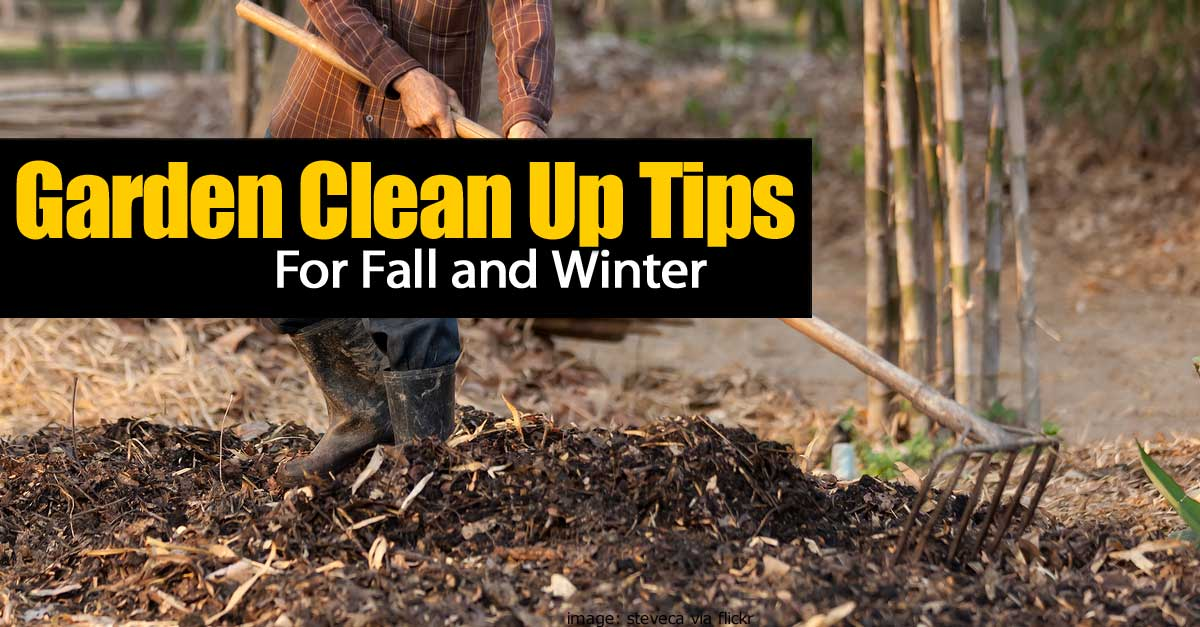 garden-clean-up-fall-winter-093014