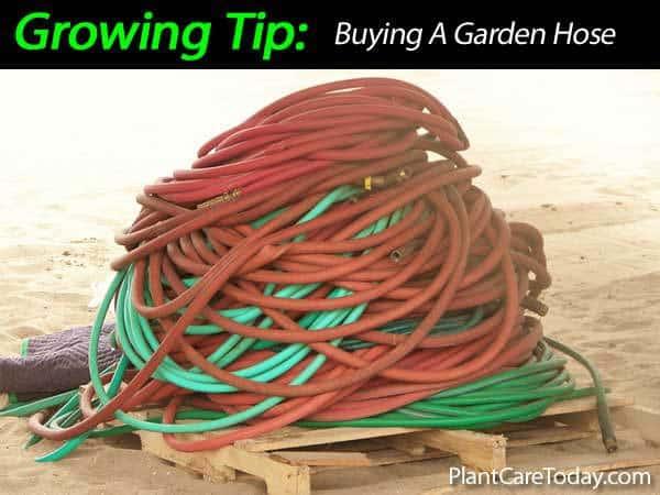 Garden Hose 031514