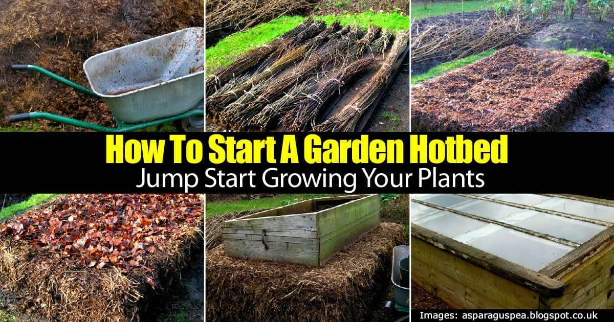 How To Start A Garden Hotbed Jump Start Growing Your Plants
