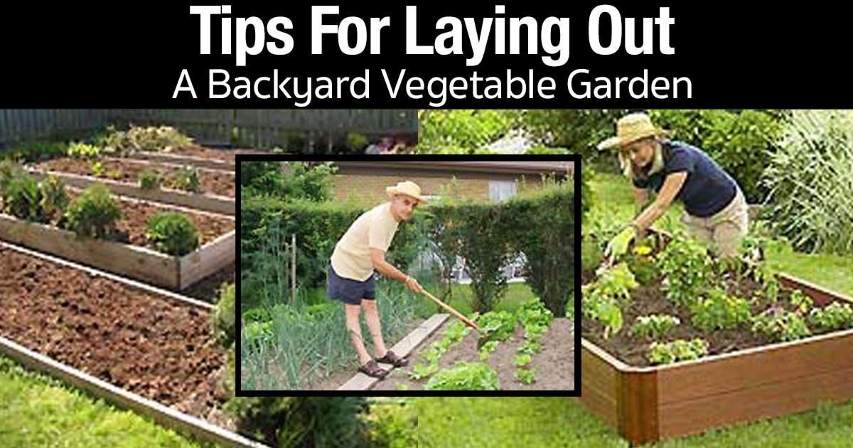 How to layout a backyard vegetable garden for Vegetable garden arrangement