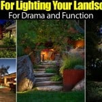 Tips For Lighting Your Landscape For Drama and Function