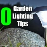 10 Garden Lighting Tips: #3 – How To Best Use Spotlights In The Landscape