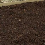 What Is Good Garden Loam?