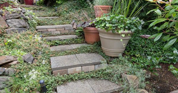 Garden Stone: How To Choose The Right Stone For Your Garden on
