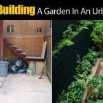 Tips For Building A Garden In An Urban Canyon