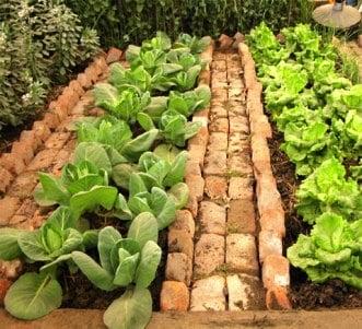 Make Garden Paths In Your Vegetable And Flower Garden