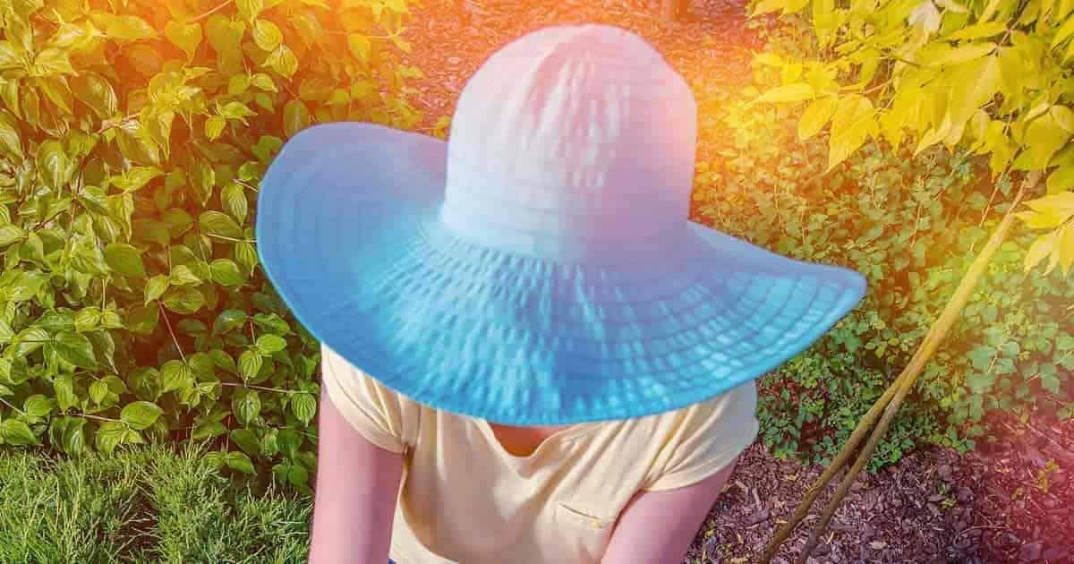 wide brim gardening sun hat