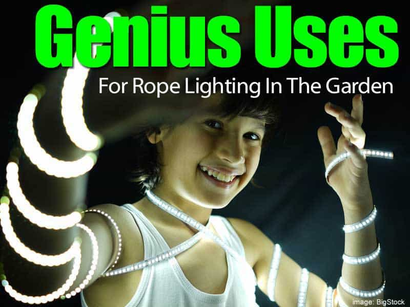 genius-garden-rope-lighting-083114