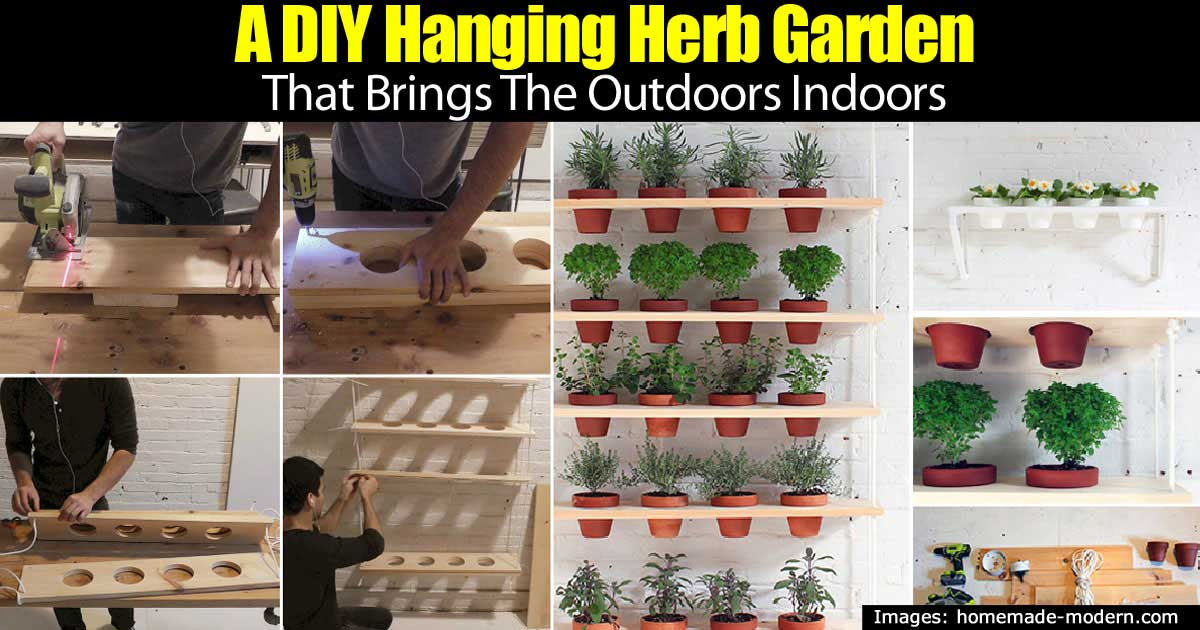DIY Hanging Herb Garden Brings Fresh Herbs Indoors