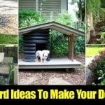 8 Backyard Ideas To Make Your Dog Happy