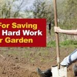5 Tips for Saving Hours of Hard Work in Your Garden