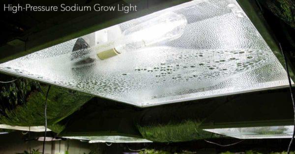 High-Pressure Sodium Grow Light