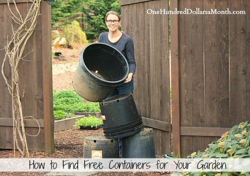 How To Find Free Pots And Containers For Your Garden