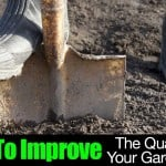 How To Improve the Quality of Your Garden Soil