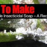 How To Make Homemade Insecticidal Soap – A Recipe