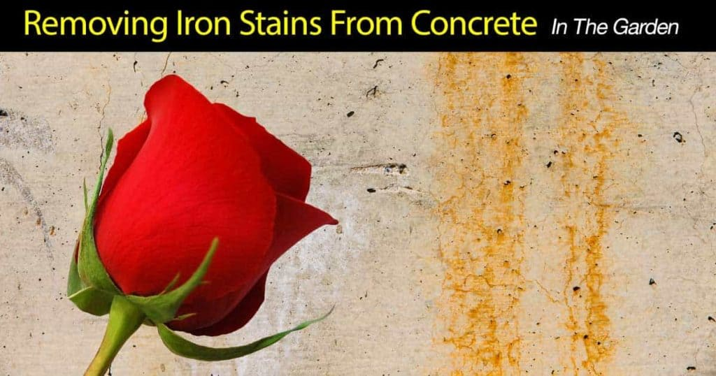 remove iron stains from concrete