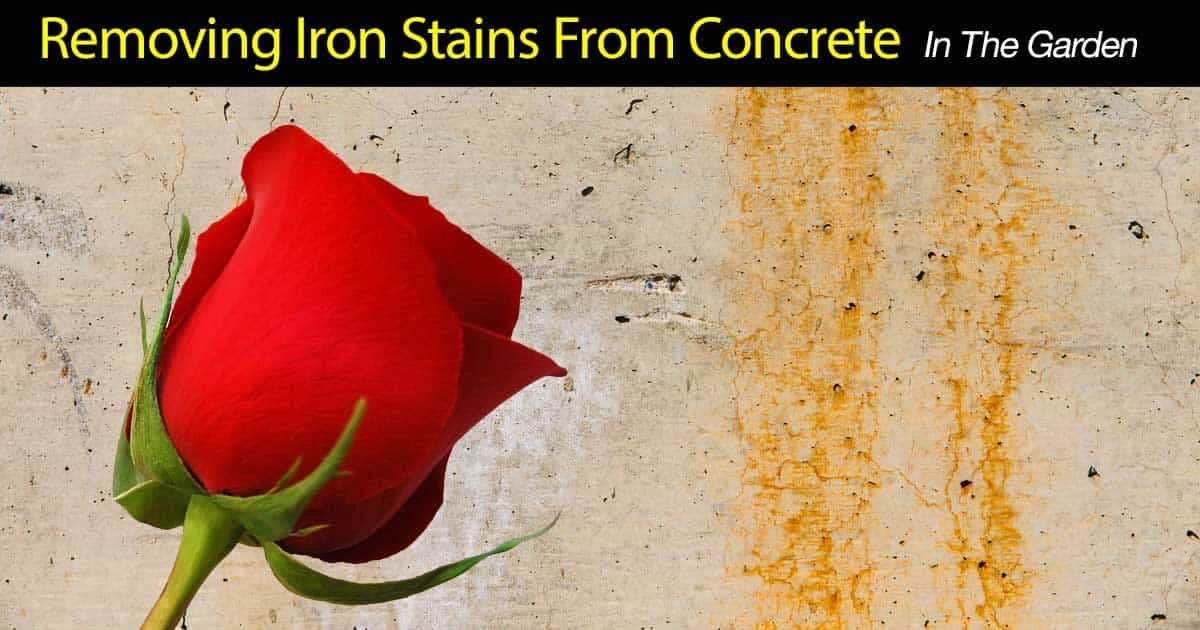 How to remove iron stains from concrete in the garden for Removing grease stains from concrete