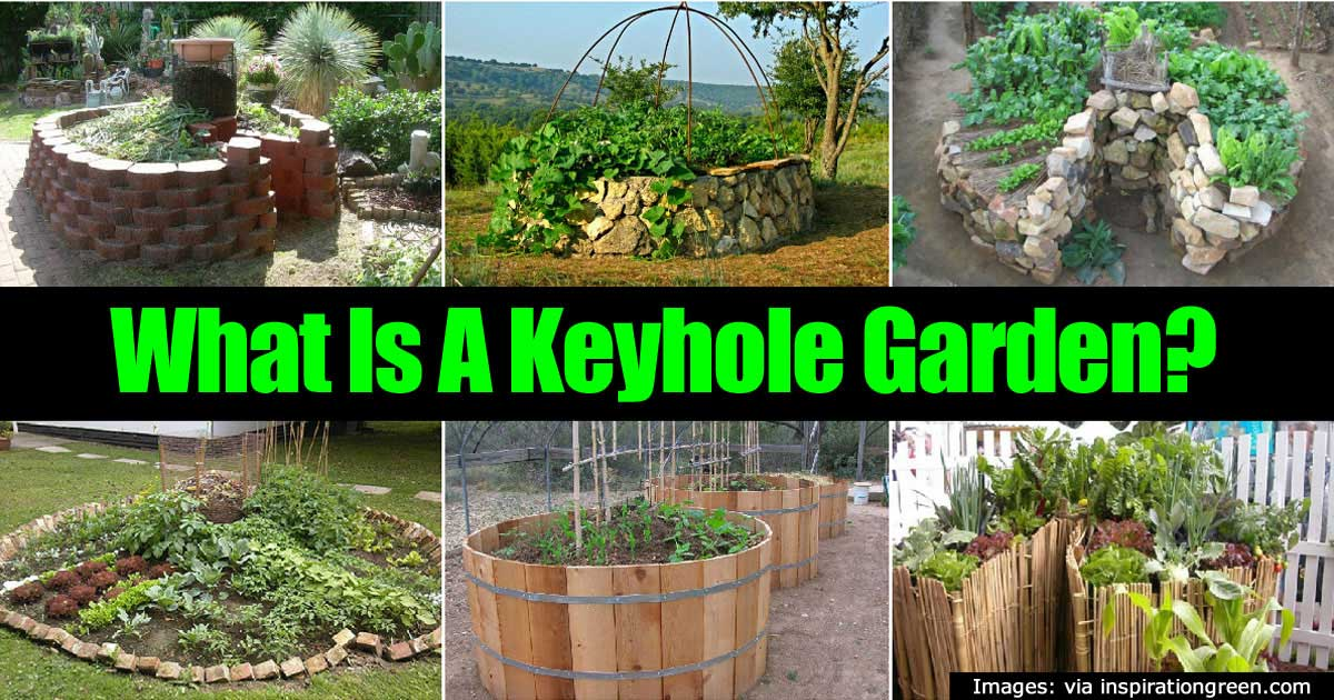 What Is A Keyhole Garden