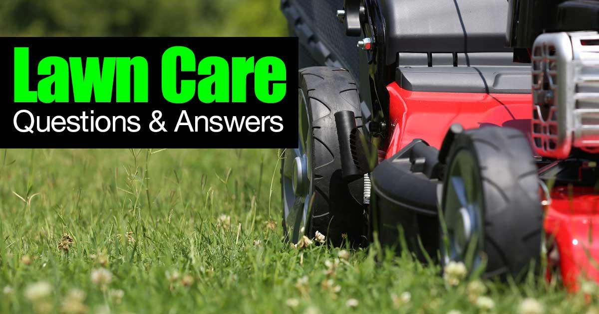 lawn-care-q-a-01312016