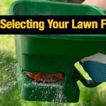 Toasted Green: Tips For Selecting Your Lawn Fertilizer