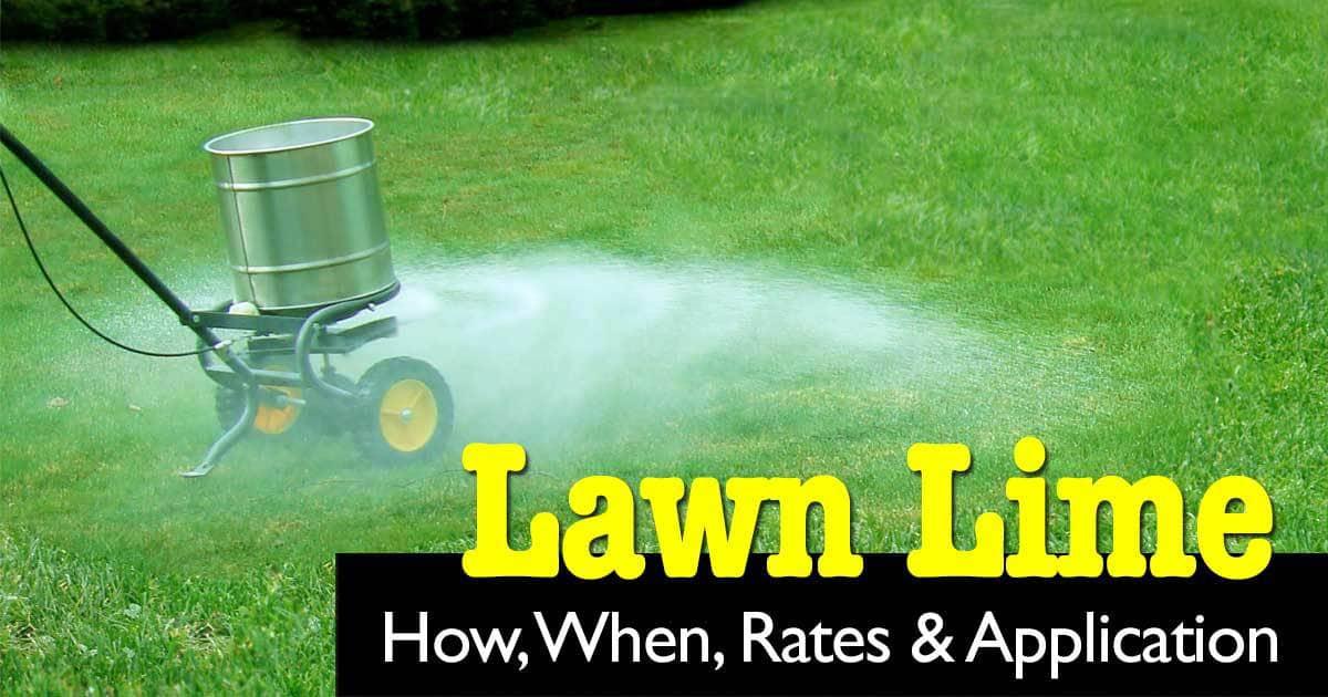 lawn-lime-03312015