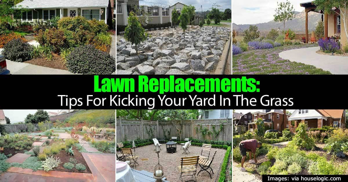 lawn-replacements-22820151179