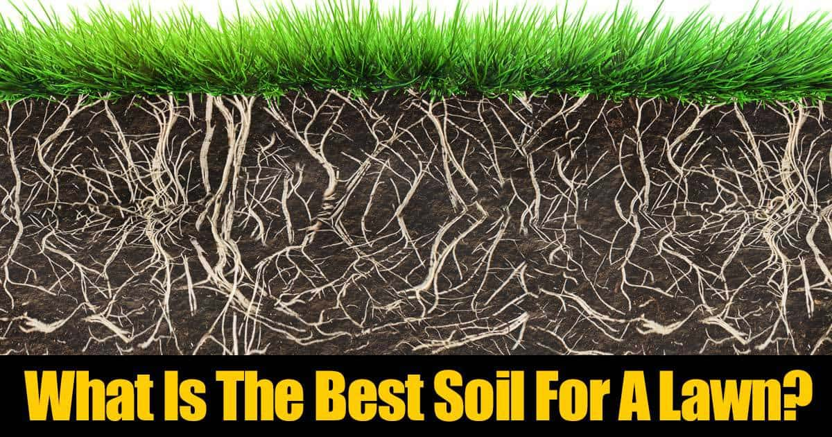 What is the best soil for a lawn for What soil contains