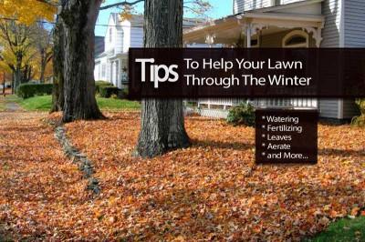 lawn-winter-111713