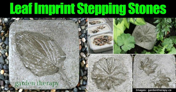 leaf-stepping-stones-63020151550