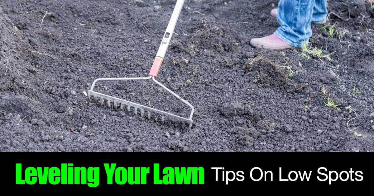 level-lawn-01312016