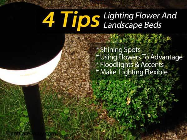 4 tips on lighting flower and landscape beds mozeypictures Choice Image