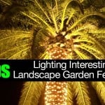 Tips On Lighting Interesting Landscape Garden Features