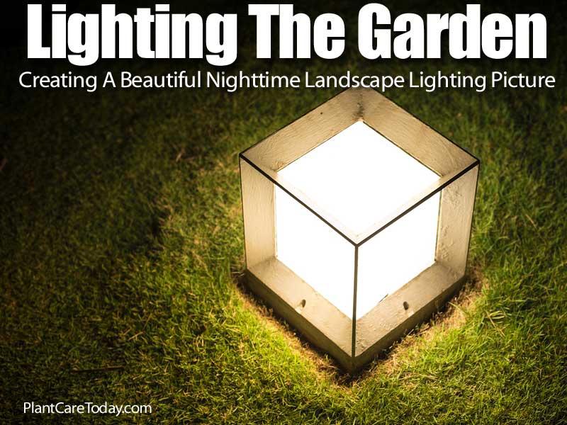 lighting-the-garden-073114