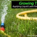 Tips On Applying Liquid Lawn Fertilizer
