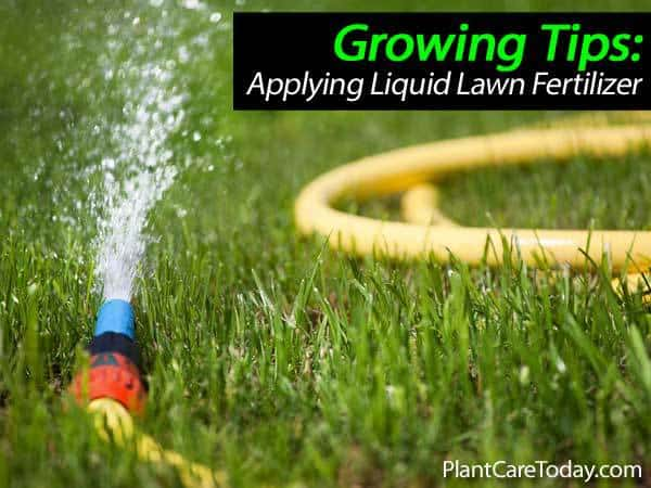 liquid-lawn-fertilizer-031514