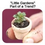 """Are """"Little Gardens"""" Part Of A Trend?"""