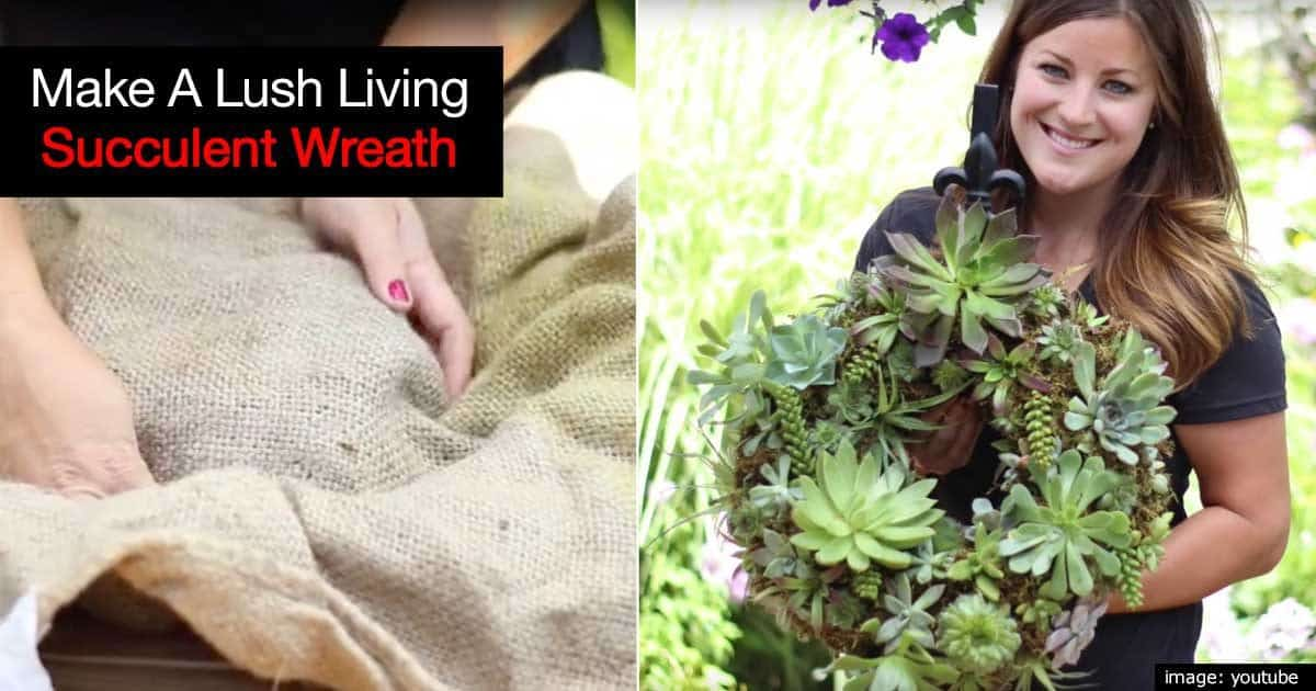 living-succulent-wreath-09302018