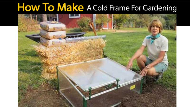 How to Make A Cold Frame For Gardening Video