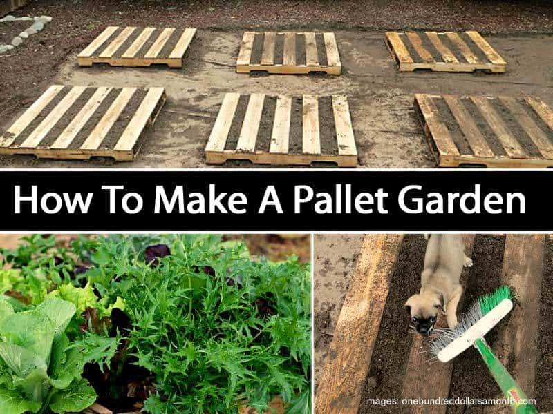 How to make a pallet garden for Things to build using pallets