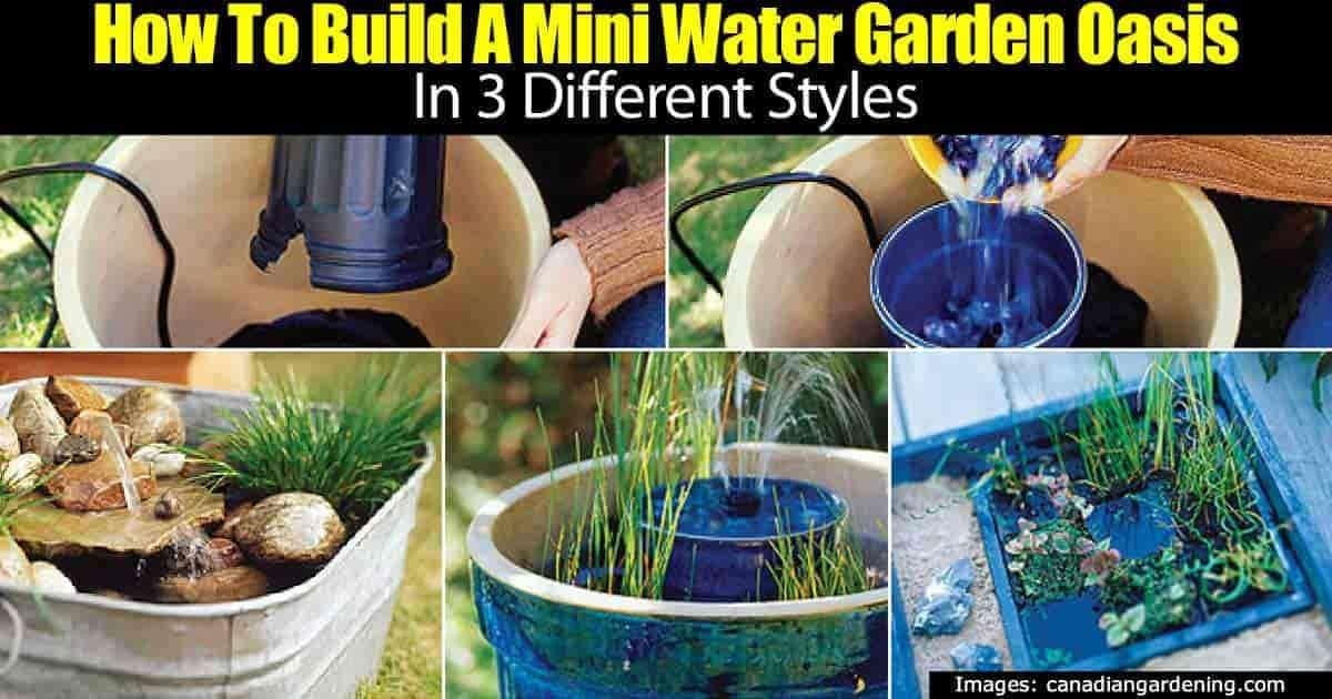 Cómo hacer un jardín acuático de contenedores para su terraza -