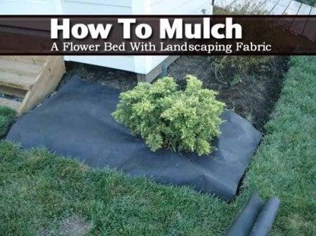 mulch-bed-012014
