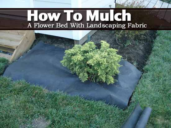 how to mulch a flower bed with landscaping fabric