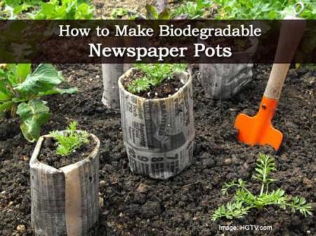 newspaper-pots-010314
