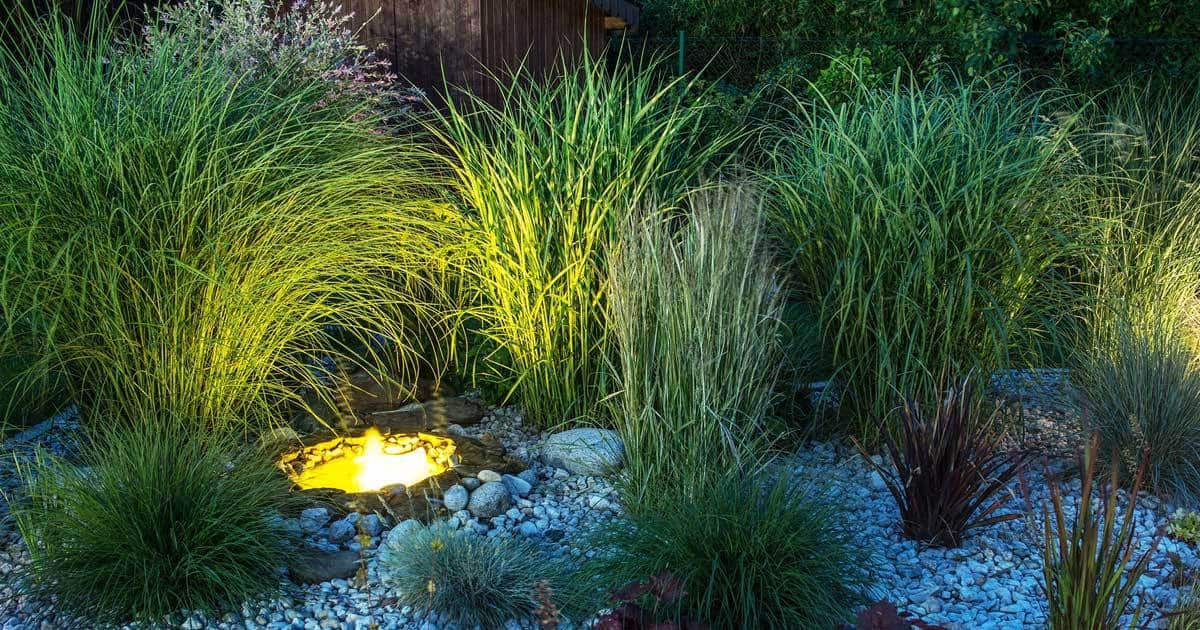 outdoor garden lighting general principles tips and ideas